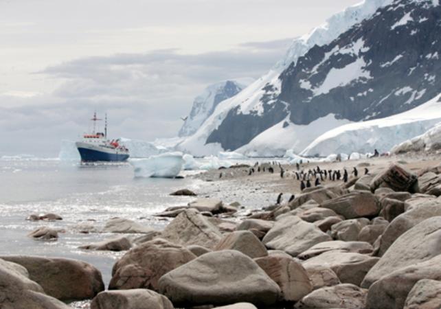 Croisière en Antarctique au départ d'Ushuaia : 11 jours / 10 nuits dans la péninsule Antarctique et  les îles Shetland du Sud image 9