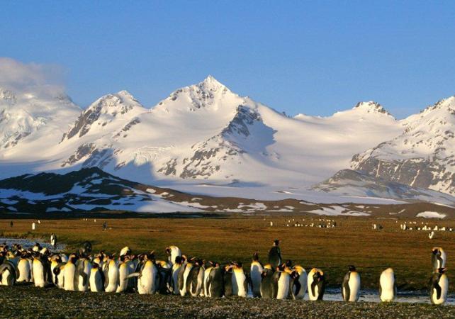 Croisière en Antarctique au départ d'Ushuaia : 11 jours / 10 nuits dans la péninsule Antarctique et  les îles Shetland du Sud image 2