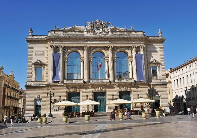 Tour privé de Montpellier à pied - 2h - Montpellier -