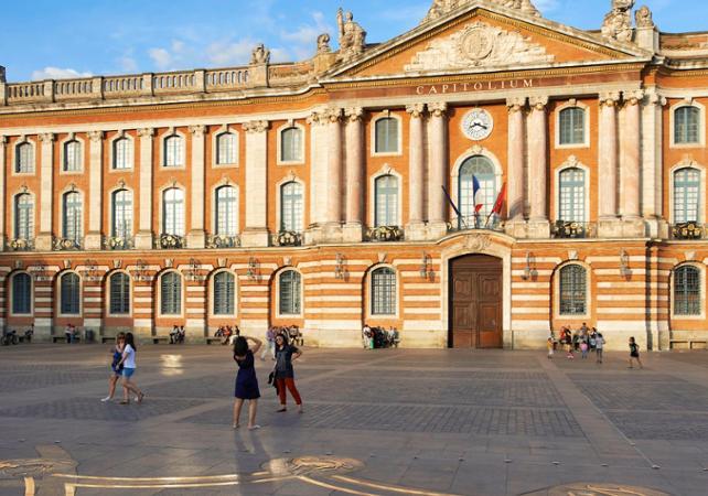 Tour privé de Toulouse à pied - 3h - Toulouse -