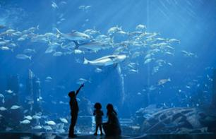 The Lost Chambers Aquarium – Tickets for the Hotel Atlantis Aquarium in Dubai