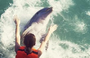 Half-Day Cruise with Unlimited Drinks and Swimming with Dolphins – Departing from Varadero