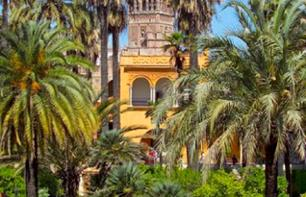 Private Visit to the Alcazar Palace in Seville