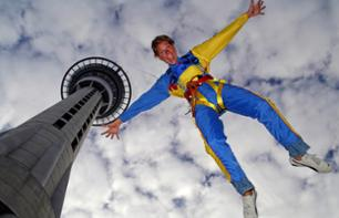 Jump from the top of the Sky Tower - Auckland