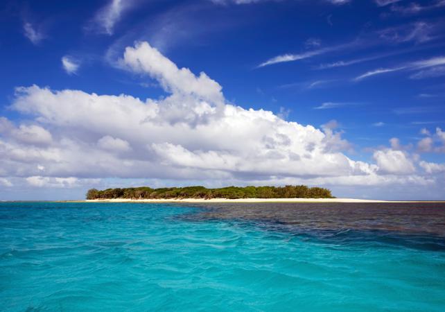 Excursion de 5 jours à la découverte de la Grande Barrière de Corail et de Fraser Island - Au départ de Brisbane image 9