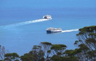 Ferry Transfer between Penneshaw (Kangaroo Island) and Cape Jervis – Transport to Adelaide optional