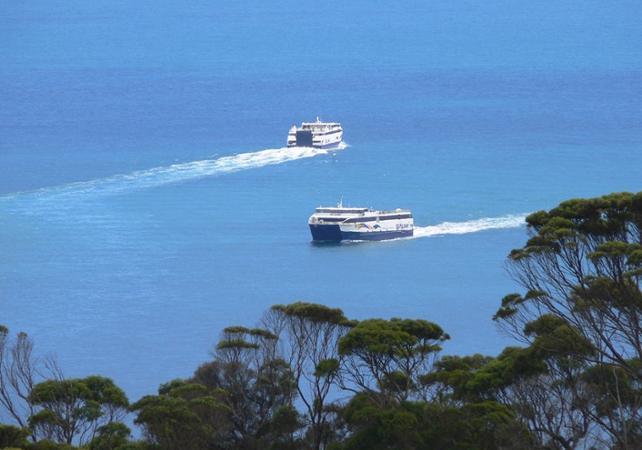 Transfert en ferry entre Penneshaw (Île Kangourou) et Cape Jervis - Transport vers Adélaïde disponible en option image 1