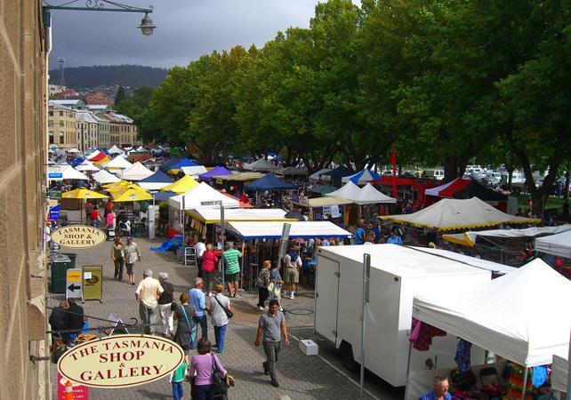 Découverte de Hobart et ses alentours : centre-ville, Mont Wellington, Richmond, Bonorong Center et jardin botanique image 1