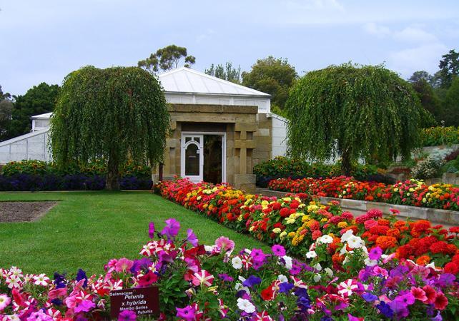 Découverte de Hobart et ses alentours : centre-ville, Mont Wellington, Richmond, Bonorong Center et jardin botanique image 3