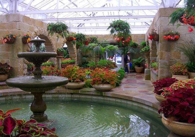 Découverte de Hobart et ses alentours : centre-ville, Mont Wellington, Richmond, Bonorong Center et jardin botanique image 4