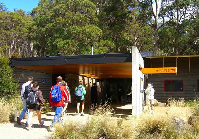 Excursion jusqu'aux Chutes Russell, dans le parc national du mont Field – Au départ de Hobart image 2