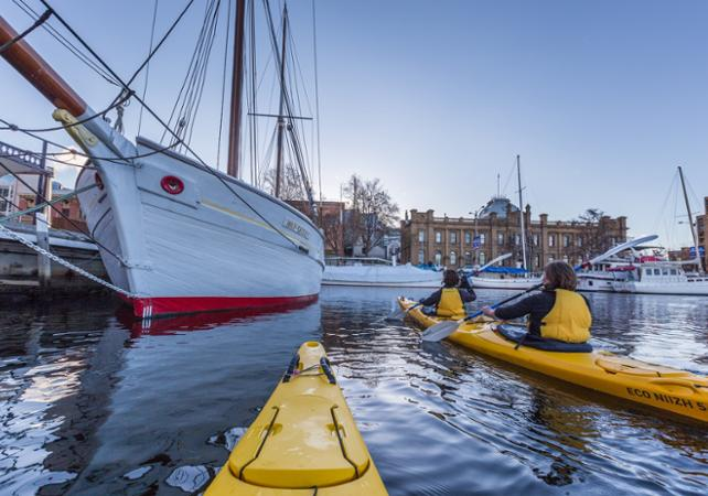 Balade en kayak avec guide à la découverte de Hobart – Déjeuner inclus image 1