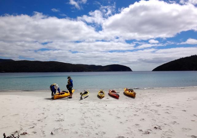 Excursion en kayak à la découverte de la presqu'île Tasman – Au départ de Hobart image 2