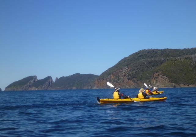Excursion en kayak à la découverte de la presqu'île Tasman – Au départ de Hobart image 4