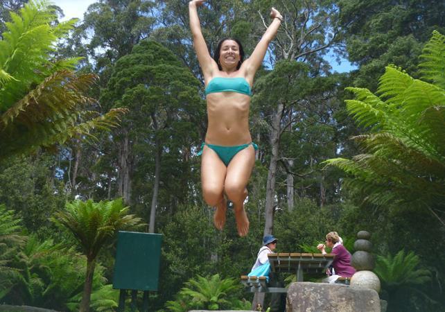 Excursion au parc national des Hastings Caves avec accès à la Tahune Airwalk – Au départ de Hobart image 10