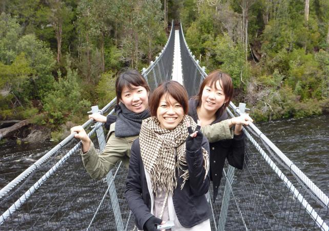 Excursion au parc national des Hastings Caves avec accès à la Tahune Airwalk – Au départ de Hobart image 13