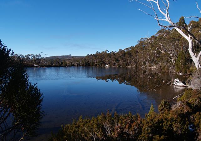Excursion autour de Hobart : Mont Field, chutes Russell, diables de Tasmanie et Mont Wellington – Au départ de Hobart image 4
