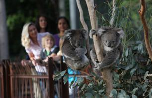 Billet Zoo de Melbourne