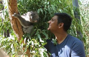 Tickets for Healesville Sanctuary – Bushland Reserve for Australian species 1 hour from Melbourne