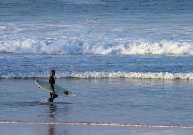 Leçon de surfà Bondi Beach, la plus célèbre plage de Sydney - Pour débutants image 1