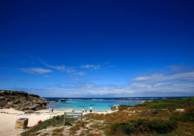 Découverte de Rottnest Island en vélo et visite guidée d'introduction – Déjeuner en option image 3