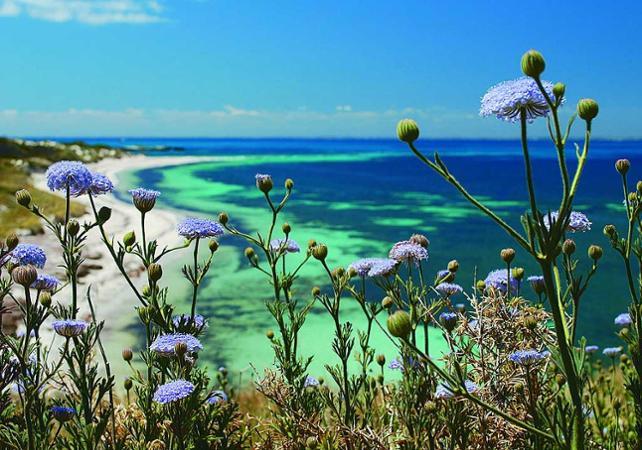 Découverte de Rottnest Island en vélo et visite guidée d'introduction – Déjeuner en option image 6