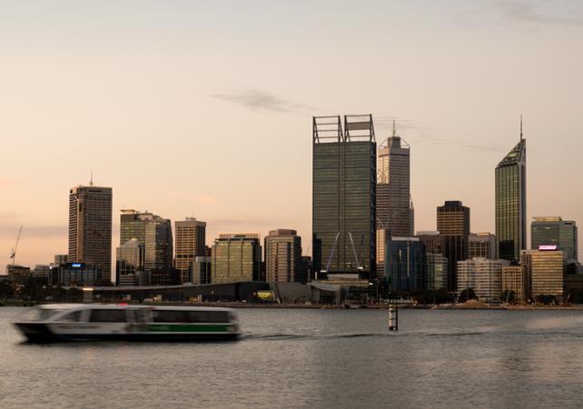 Pass 3 en 1 : accès zoo, croisière sur le fleuve Swan et ferry entre le centre-ville et le sud de Perth image 3