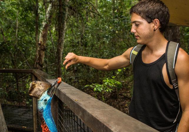 Visite de la ferme aux crocodiles Hartley – Au départ de Cairns image 5