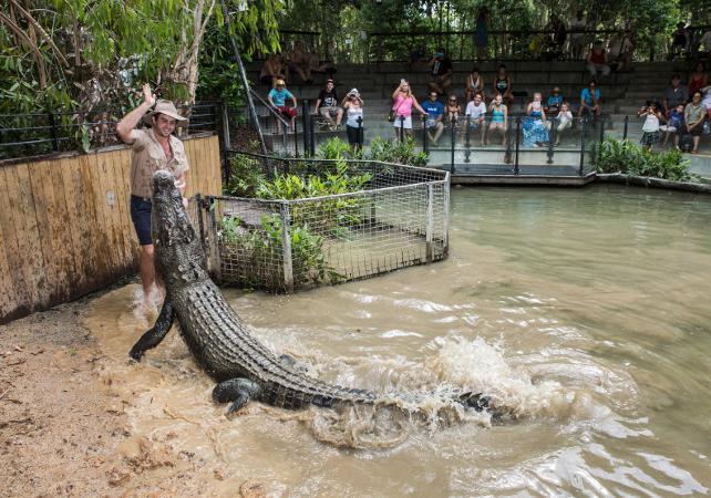 Visite de la ferme aux crocodiles Hartley – Au départ de Cairns image 1