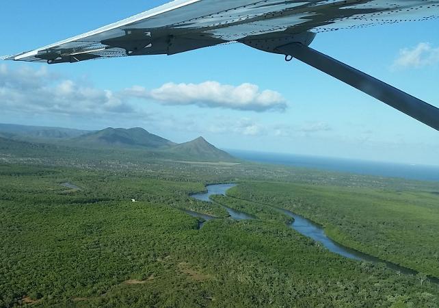 Excursion au parc national de Daintree et à Cooktown au départ de Cairns – retour en avion en option image 5
