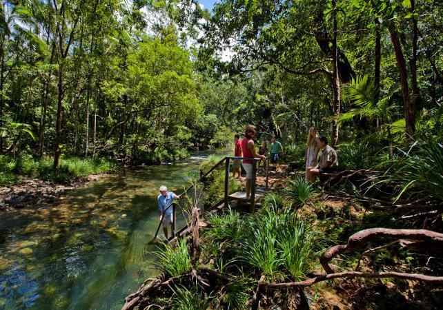 Excursion au parc national de Daintree et à Cape Tribulation – Au départ de Cairns image 7