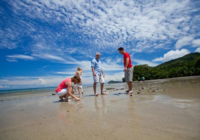 Excursion au parc national de Daintree et à Cape Tribulation – Au départ de Cairns image 6
