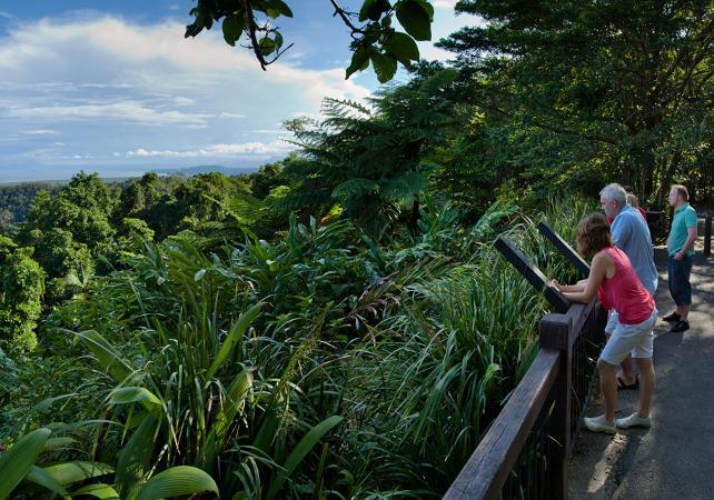 Excursion au parc national de Daintree et à Cape Tribulation – Au départ de Cairns image 8