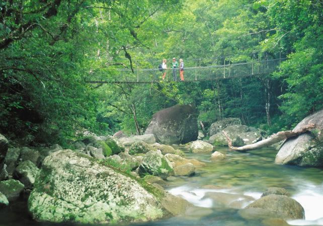 Excursion au parc national de Daintree et à Cape Tribulation – Au départ de Cairns image 10