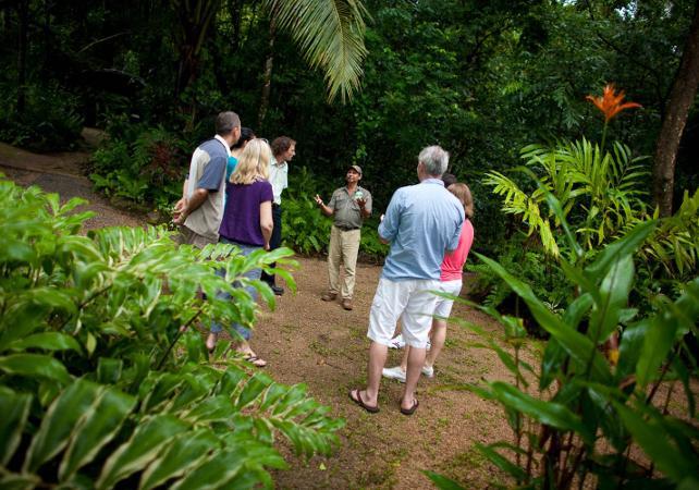 Excursion au parc national de Daintree et à Cape Tribulation – Au départ de Cairns image 3