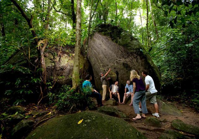 Excursion au parc national de Daintree et à Cape Tribulation – Au départ de Cairns image 5