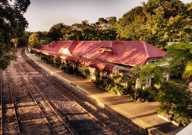 Téléphérique Skyrail et train panoramique de Kuranda – Au départ de Cairns image 6