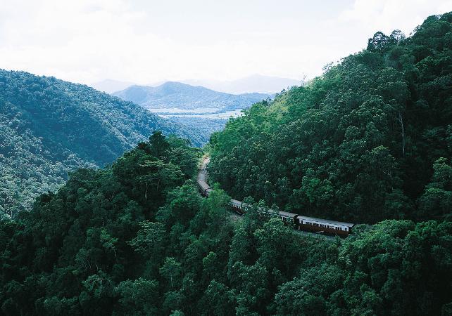 Téléphérique Skyrail et train panoramique de Kuranda – Au départ de Cairns image 5