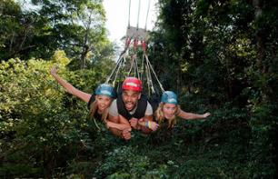 Giant Zipline in the Rainforest in Cairns