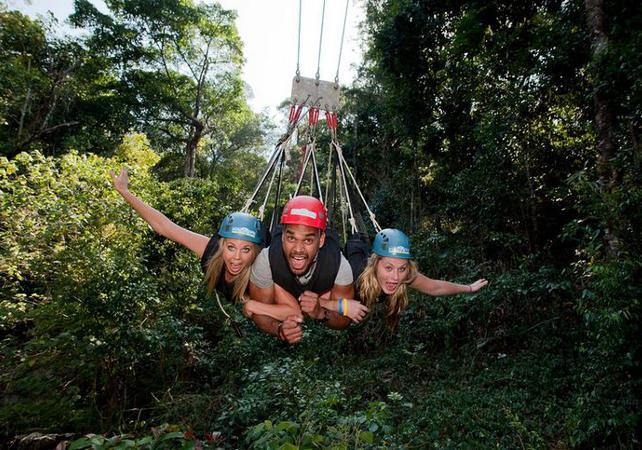 Descente en tyrolienne géante dans la forêt tropicale à Cairns image 1