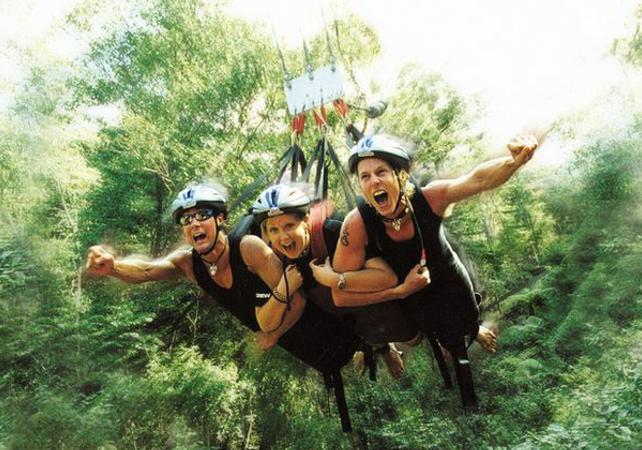 Descente en tyrolienne géante dans la forêt tropicale à Cairns image 5