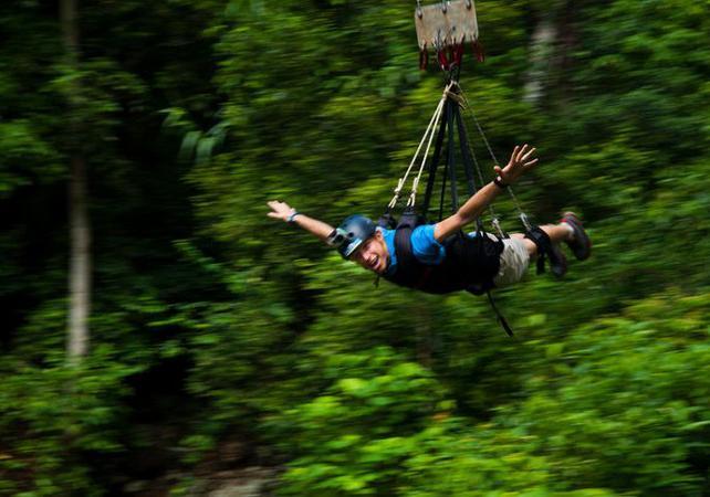 Descente en tyrolienne géante dans la forêt tropicale à Cairns image 6