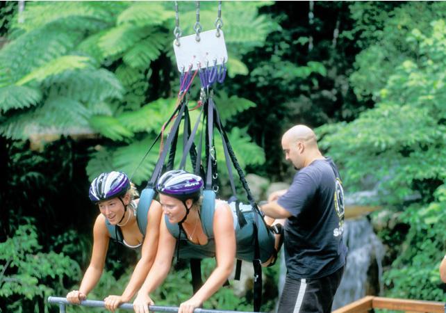 Descente en tyrolienne géante dans la forêt tropicale à Cairns image 8