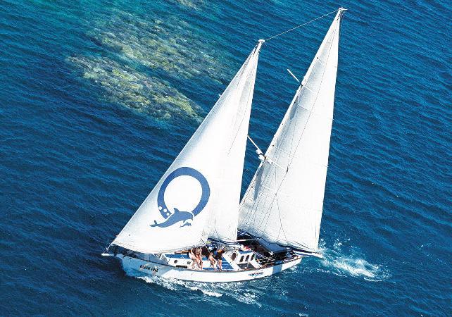 Croisière en voilier & plongée avec masque et tuba à Green Island sur la Grande Barrière de Corail – Au départ de Cairns image 2