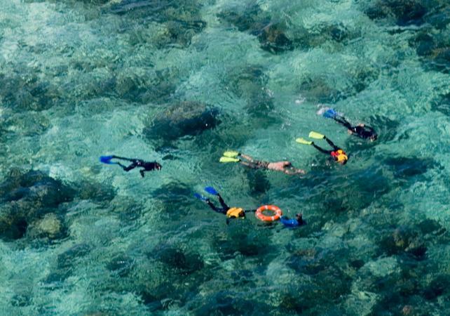 Croisière & plongée avec masque et tuba à Upolu sur la Grande Barrière de Corail – Au départ de Cairns image 2
