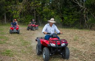 Quad Bike Ride in the Rainforest – Departing from Cairns