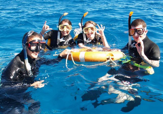 Plongée sous-marine à la Grande Barrière de Corail – Au départ de Cairns image 1