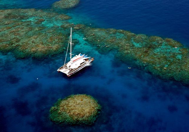 Plongée sous-marine à la Grande Barrière de Corail – Au départ de Cairns image 3