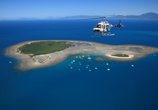 Survol en hélicoptère de la forêt tropicale et de la Grande Barrière de Corail – Au départ de Cairns image 8