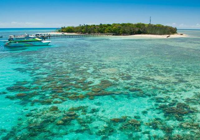 Croisière d'une journée à Green Island sur la Grande Barrière de Corail & tour en semi sous-marin – Au départ Cairns image 3